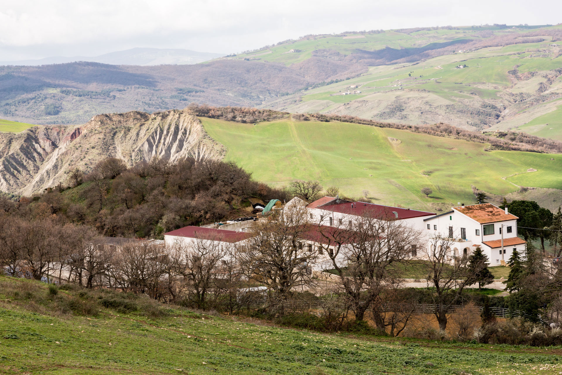 Masseria Straziuso - L'azienda vista dall'alto